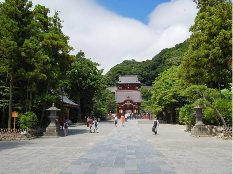 現地より約850m 荘厳な鶴岡八幡宮の風景