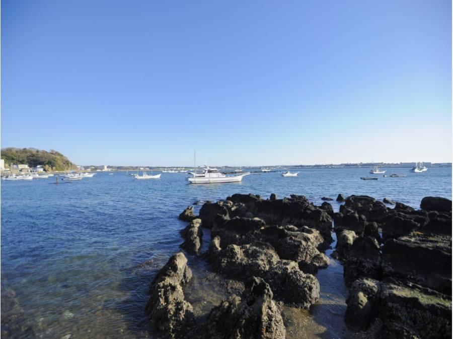 透明度の高い佐島の海