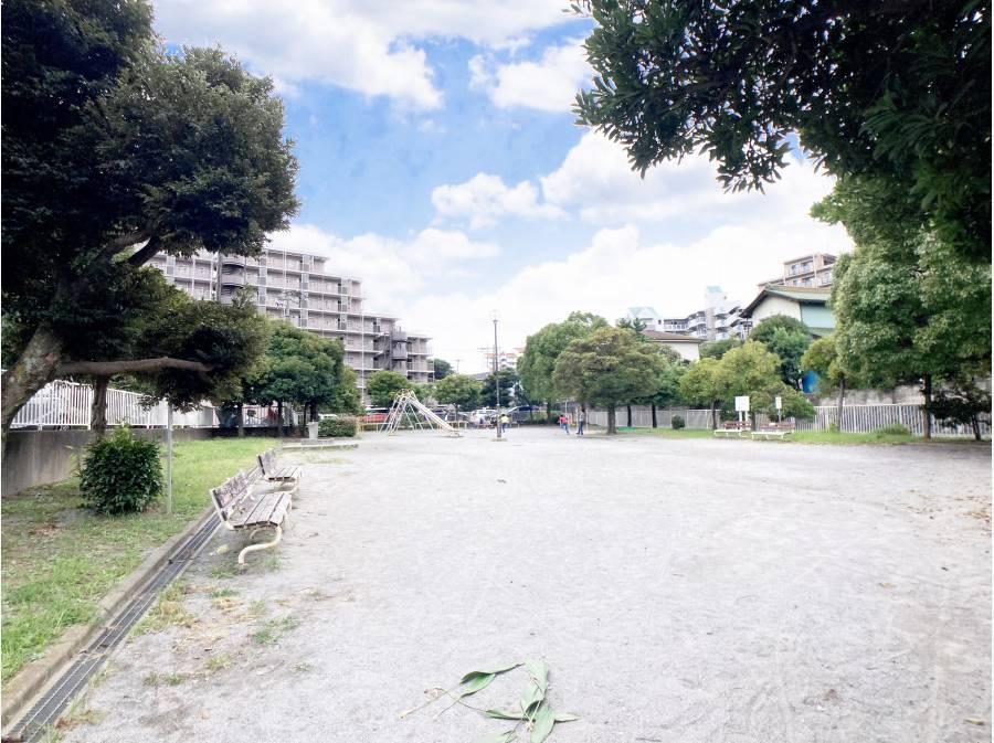 マンション隣地の公園