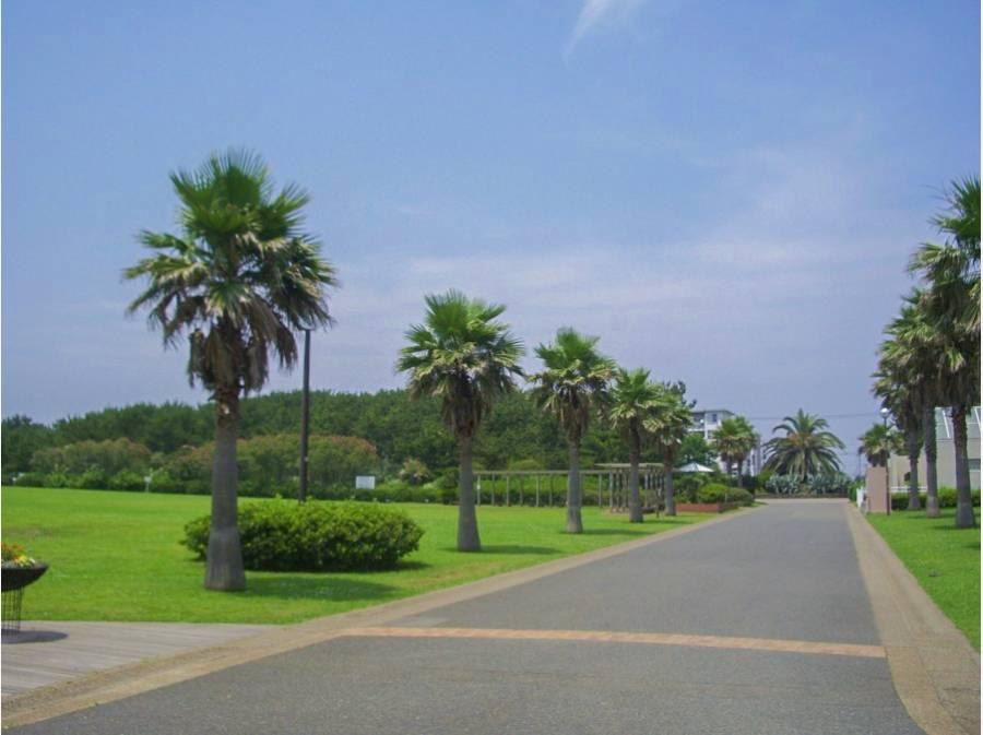 辻堂海浜公園まで約2.8キロ