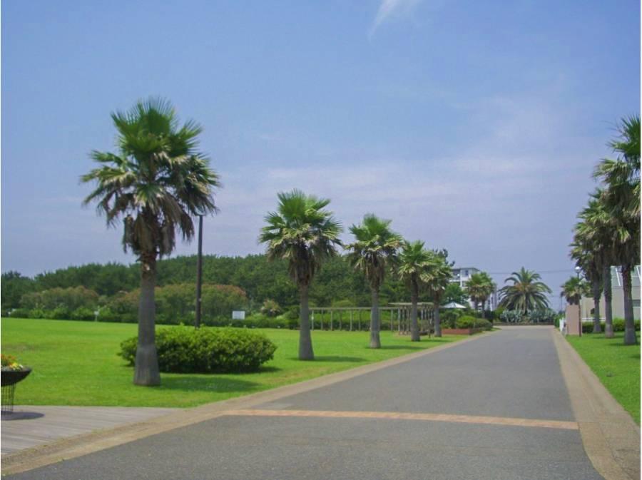 海浜公園まで約1.6km
