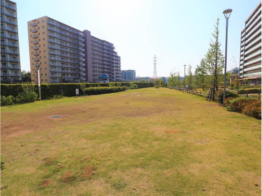 敷地内には広い芝生の公園スペースもあります。