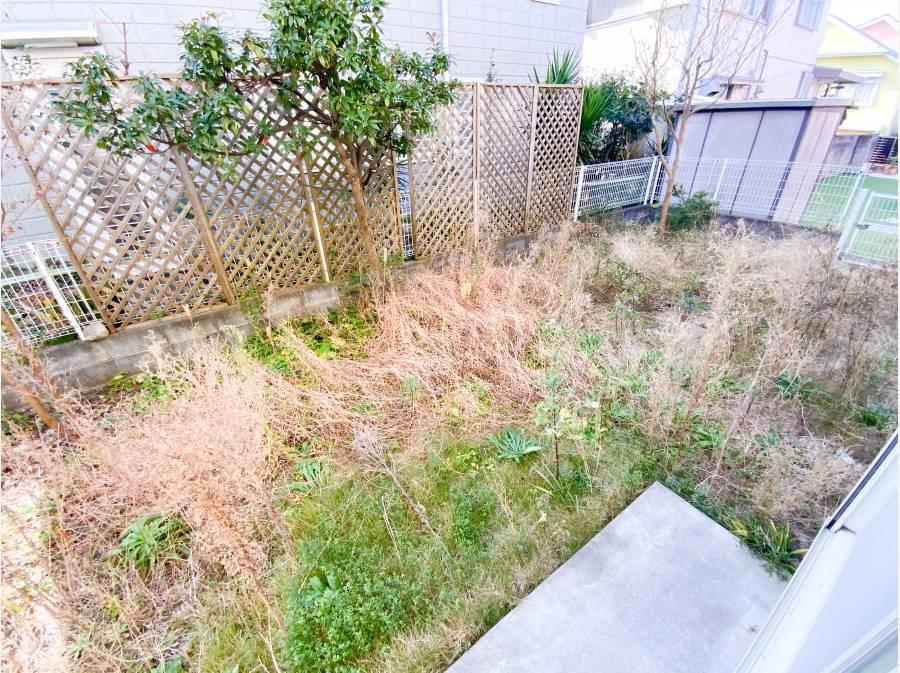お庭は今は草がボーボーですが手入れをすれば素敵な空間に!