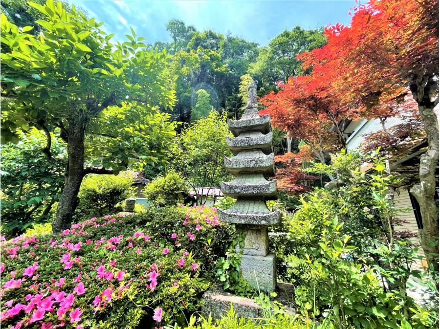 四季折々の景色を楽しむお庭、アプローチが素敵でした!