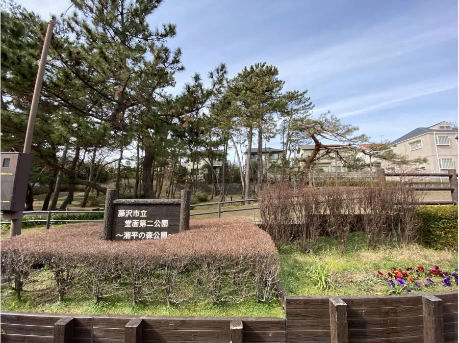 向かいは藤沢市立堂面第二公園があります。