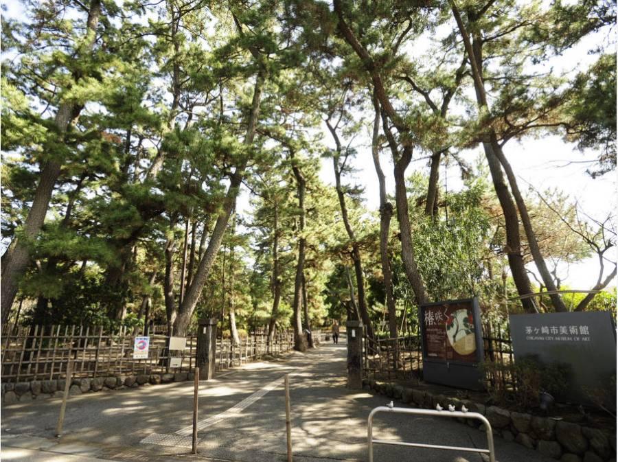 茅ヶ崎市美術館(約800m)は、散策もできます。