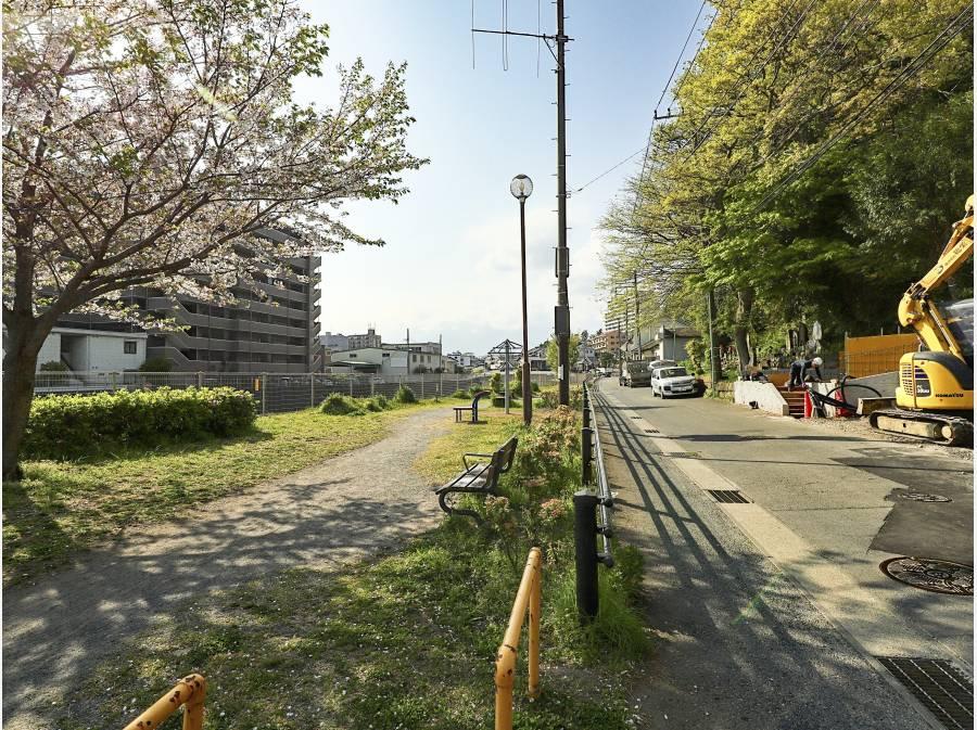 前面道路は車の通りも少なく、小川と公園があり、穏やかです