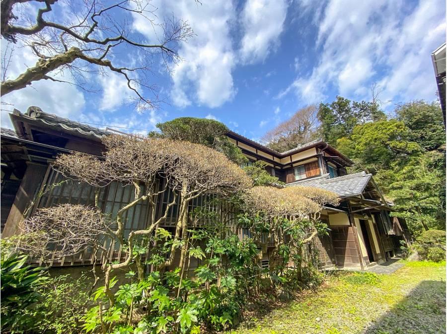 鎌倉の緑に溶け込む外観