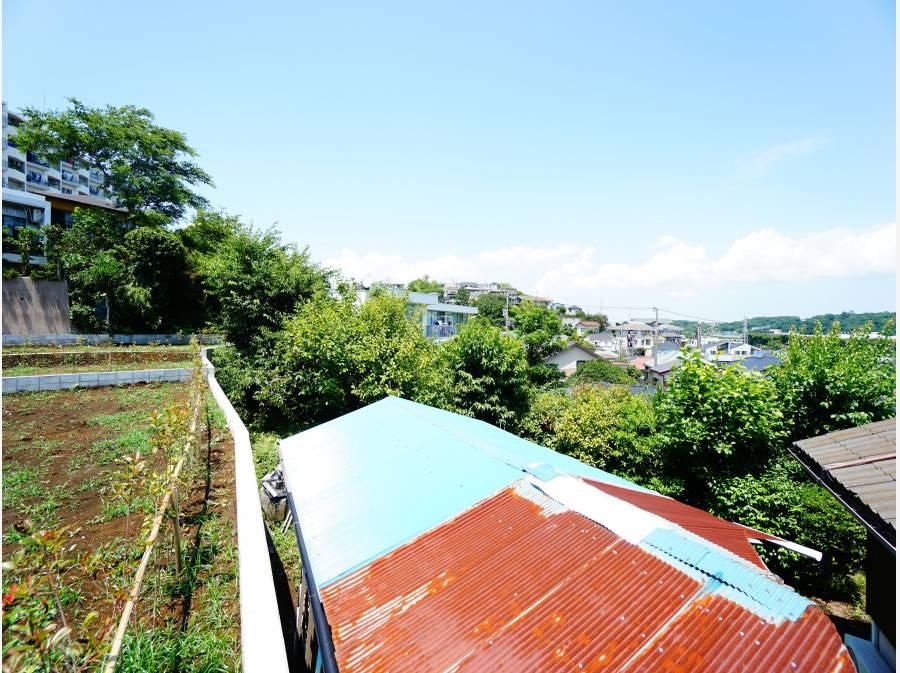 湘南の街並みを見渡すグリーンビュー!