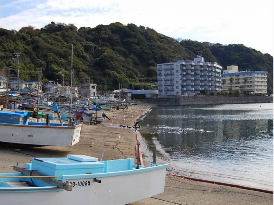 小坪漁港(約160m)