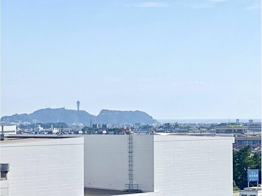 江ノ島もしっかりと見えました