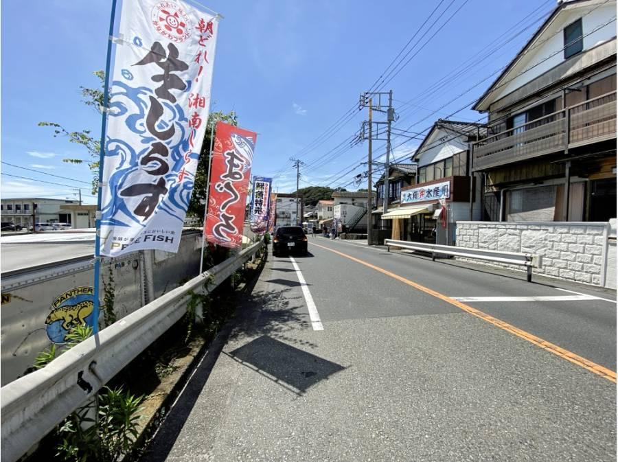 近隣には佐島漁港で水揚げされた鮮魚を扱う店舗が多数ございます
