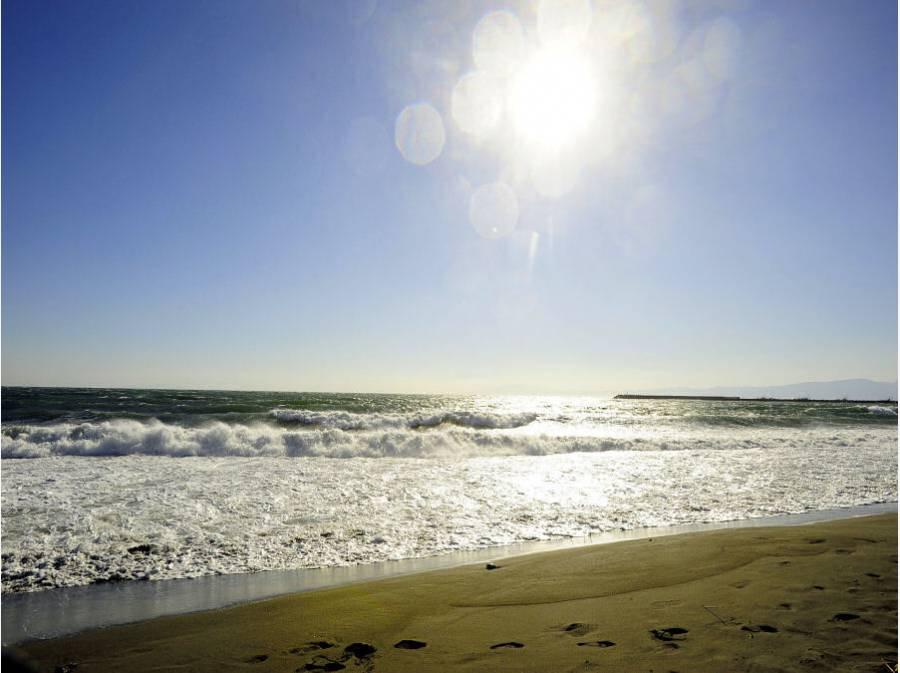 海までは徒歩12分(約900m)