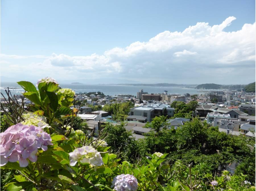 梅雨には紫陽花を愛でながら海を望む「あじさい公園」徒歩1分(約60m)
