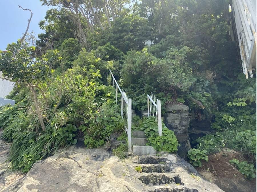 磯へ下りる階段