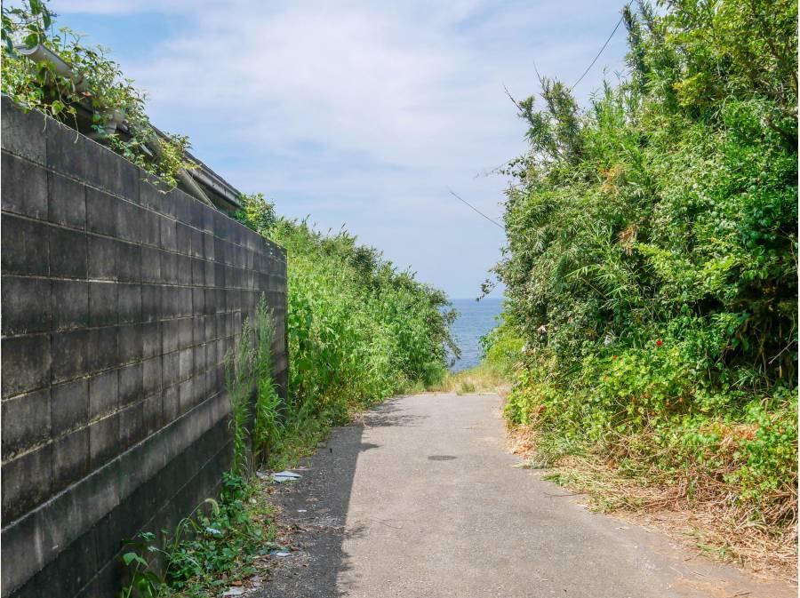 三戸浜へ続く道