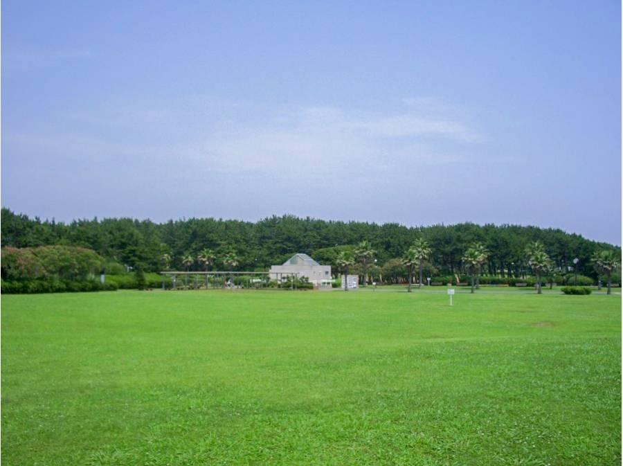 辻堂海浜公園(約1.28km、徒歩16分)で気軽にピクニック。