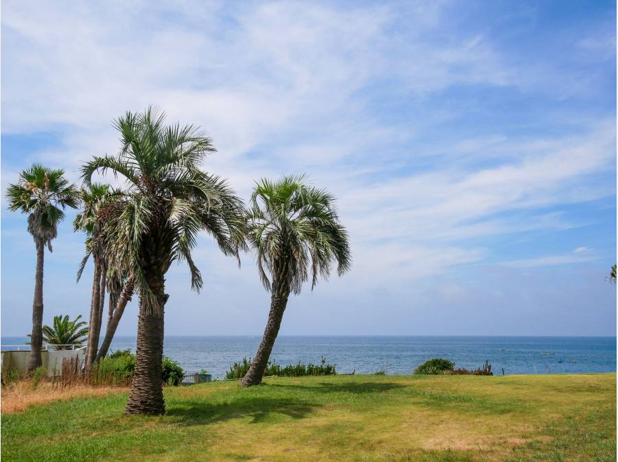 海に囲まれる立地(近隣約200m付近)