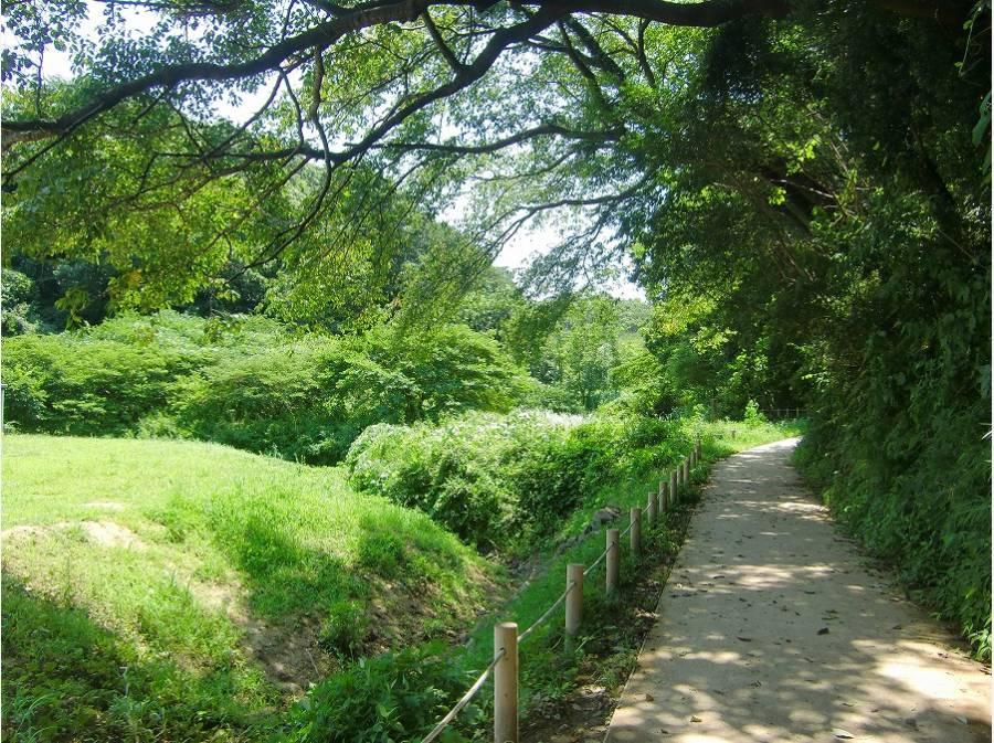 豊かな自然が残る鎌倉広町緑地まで約90m(徒歩2分)