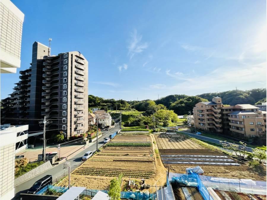 眺望♪畑view!!