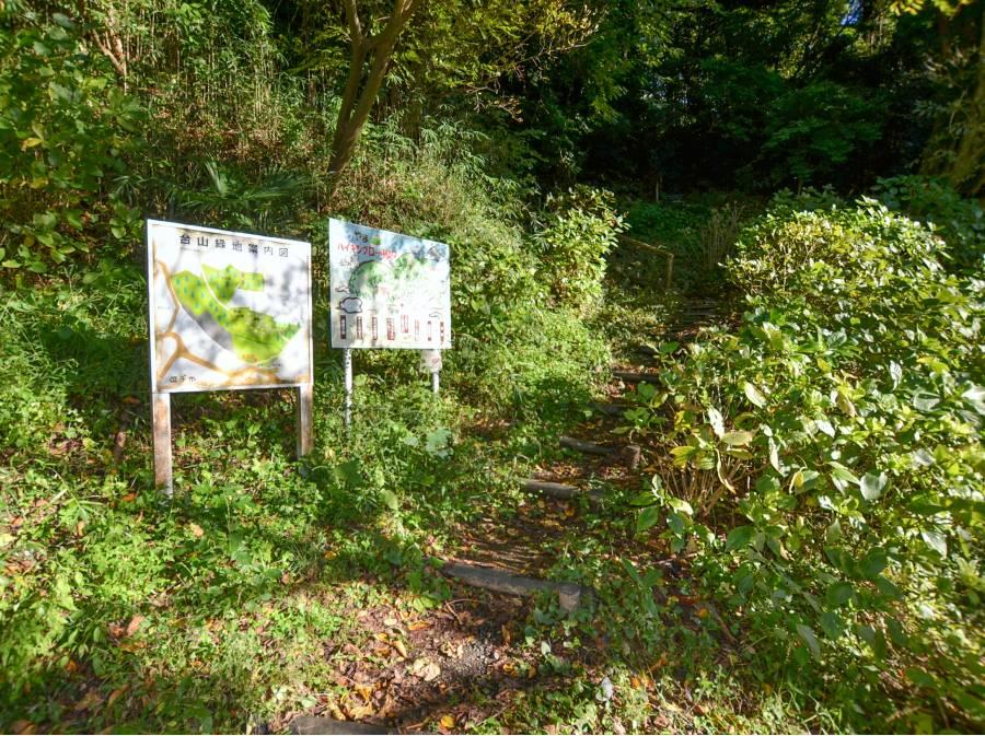 台山緑地まで徒歩7分(約550m)