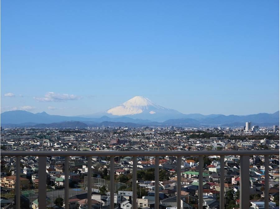 屋上からは富士山もこの通り