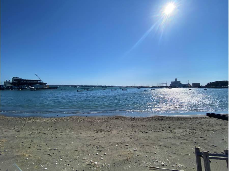 前面の海岸の風景