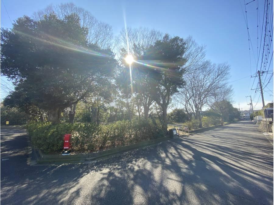 道路向いは緑溢れる公園。葉山らしいロケーションを感じます
