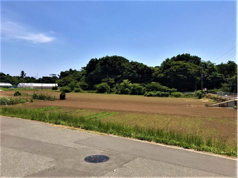 敷地よりこんな景色を望みます。