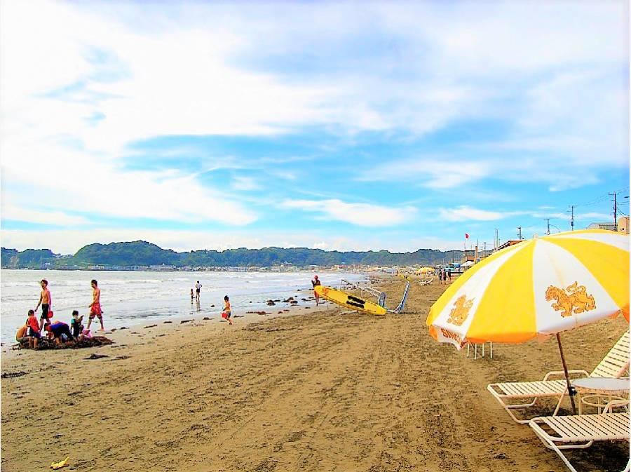 夏が待ち遠しい材木座海岸風景。