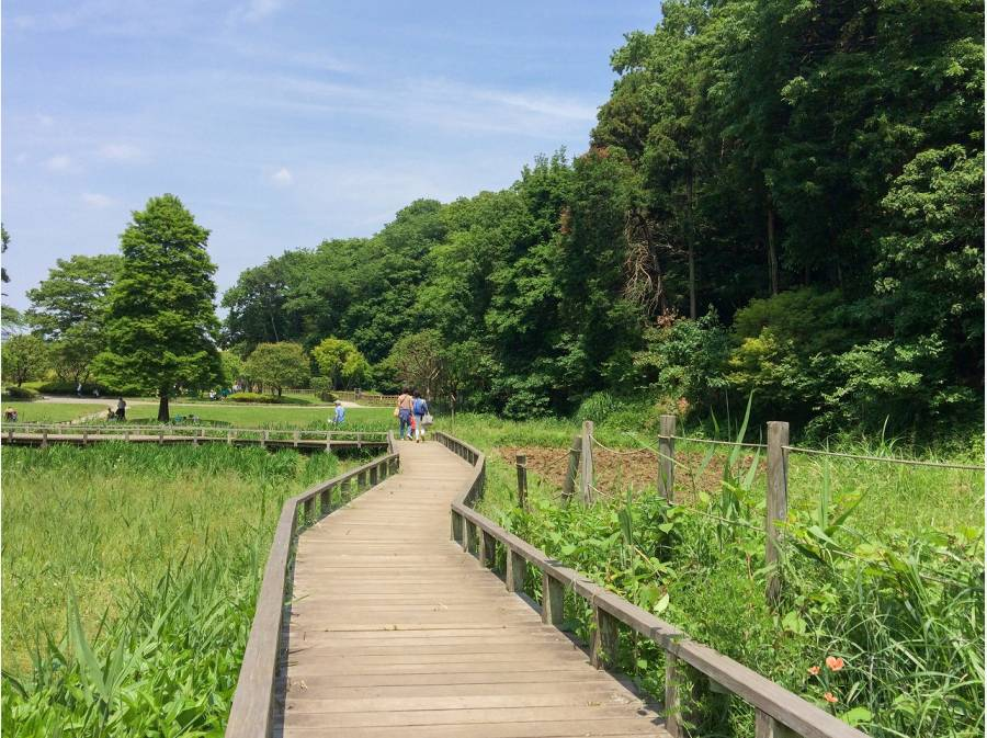 新林公園まで約600m(徒歩8分)
